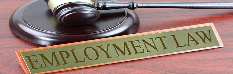 Genius Money - Employment Law